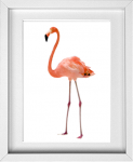 Flamingo Print from 14 Fun Summer Printables for FREE -Calmandcollected.us