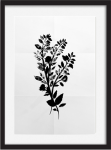 Framed black Botanical watercolor