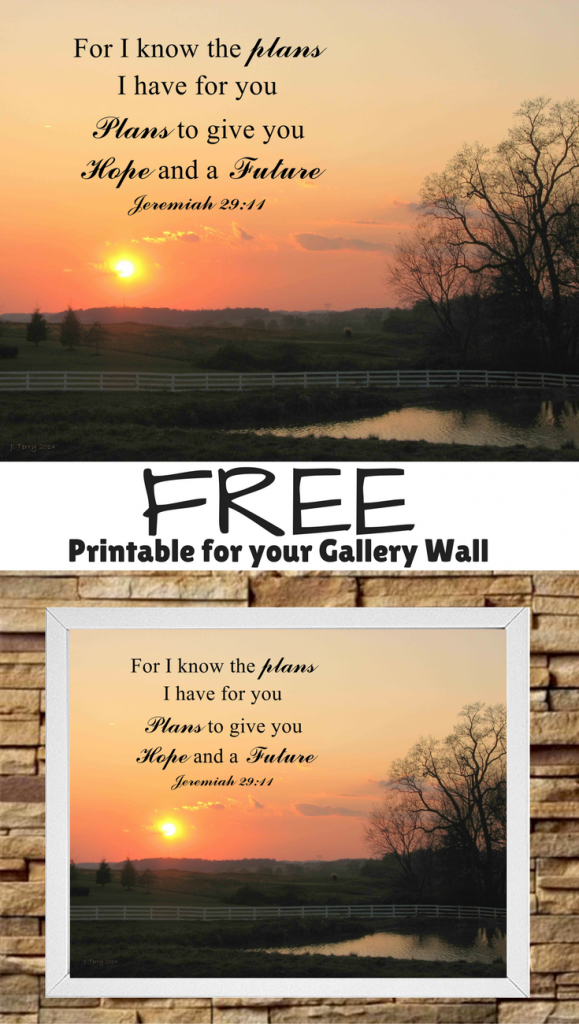"Freebie Friday- bible quote"" I know the plans I have for you..."" from calmandcollected.us"