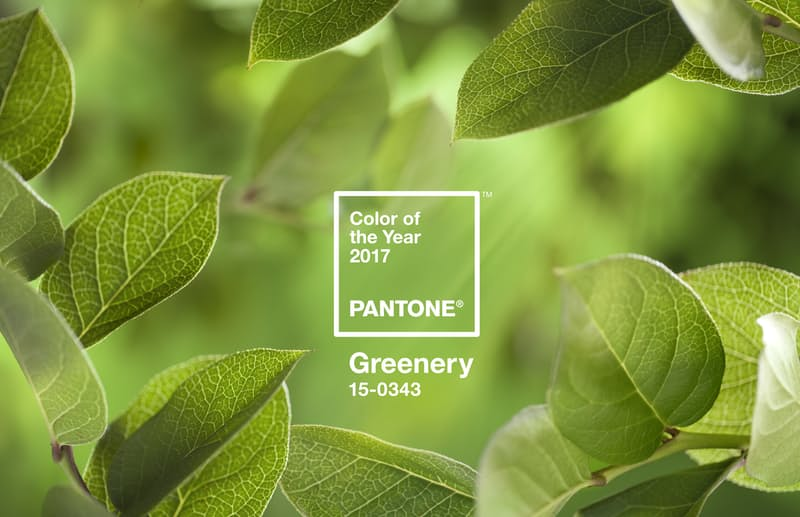 HGow to use Pantone's color of the year: Greenery--in your own home!