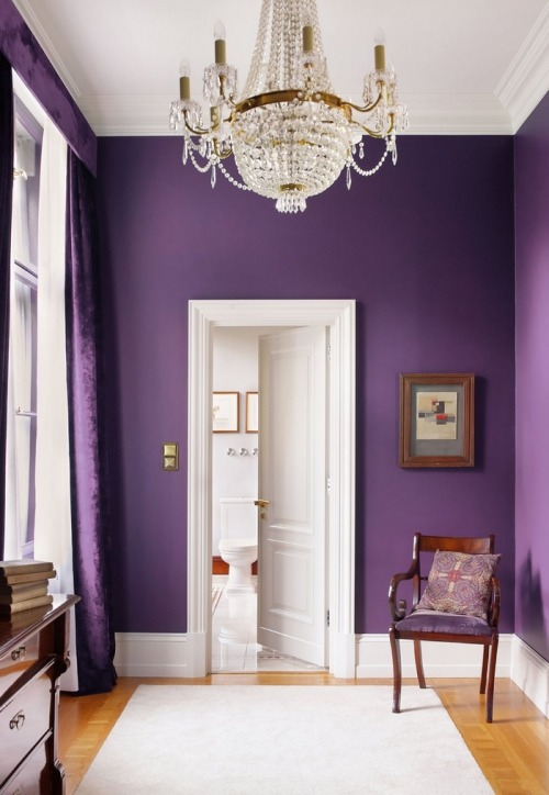 Interior Decorator Calm & Collected hunted down this interior design photo of a purple room from Decorare